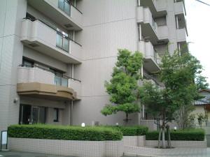 DSCF0041