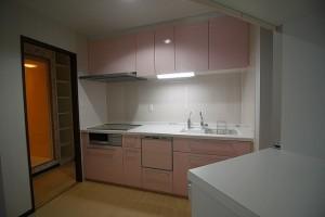ファイアスプロ キッチン